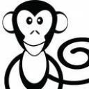 喝茶的猴子